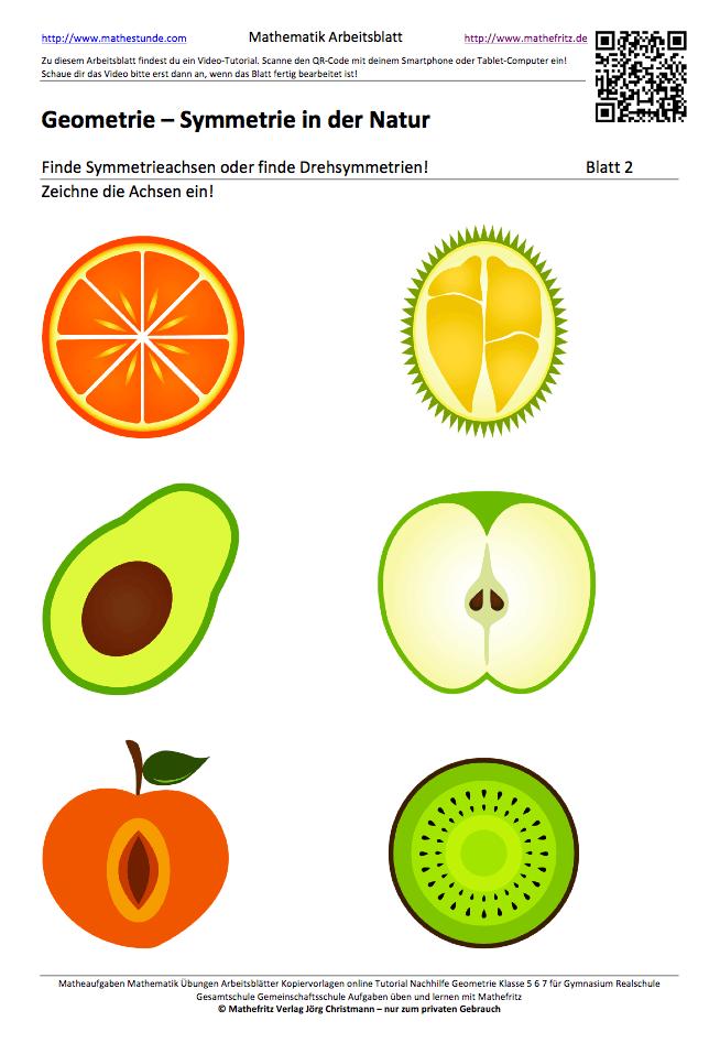 Arbeitsblatt Symmetrien in der Natur Symmetrieachsen einzeichnen